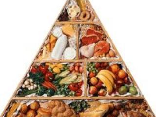 Основы правильного питания и пищевая ценность продуктов