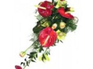 Цветы для мужчин. Как выбрать букет?