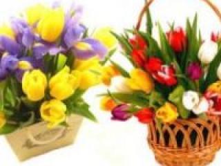 Какие цветы желательно дарить на свадьбе?