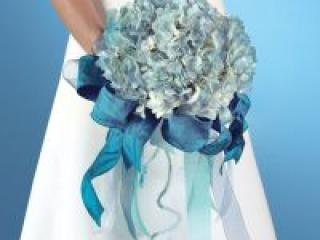 Какой букет должна выбирать невеста?