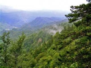 Отдых в горах: почему Лагонаки?